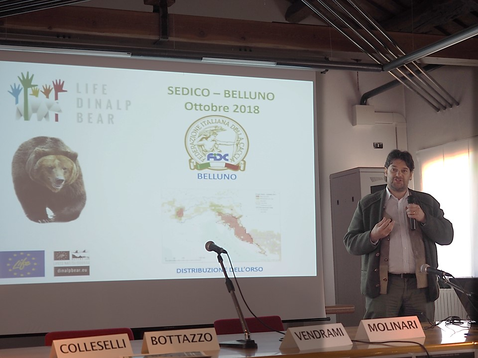 Seminar on coexistence with large carnivores in Belluno