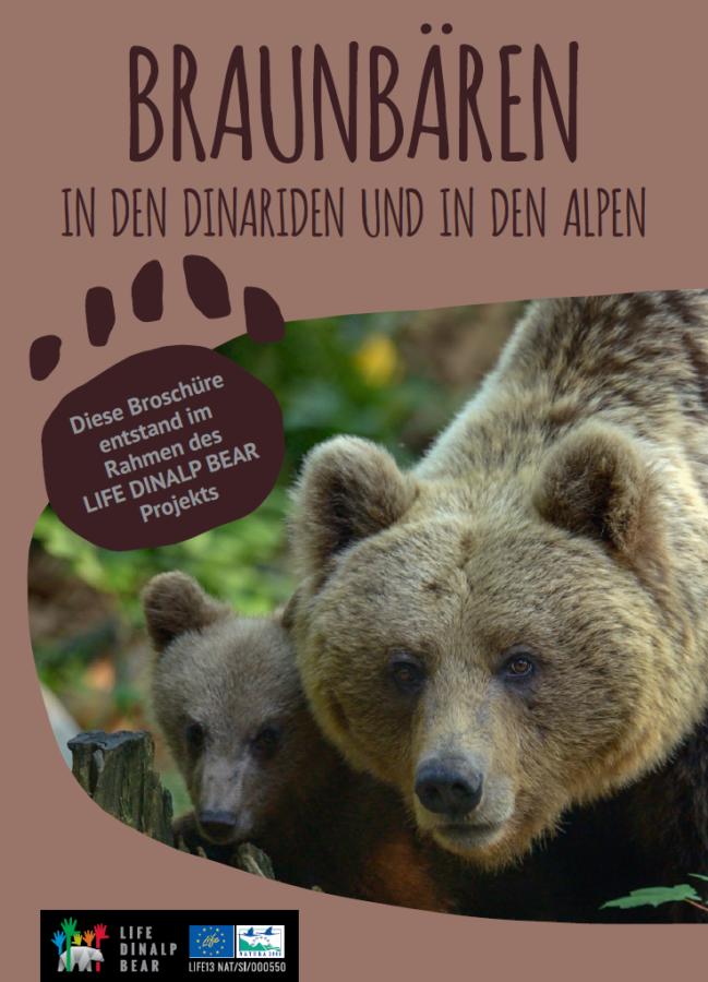 """Broschüre mit dem Titel """"Braunbären im Dinarischen Gebirge und in den Alpen"""""""