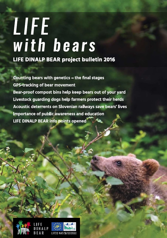 The second LIFE DINALP BEAR project bulletin issued