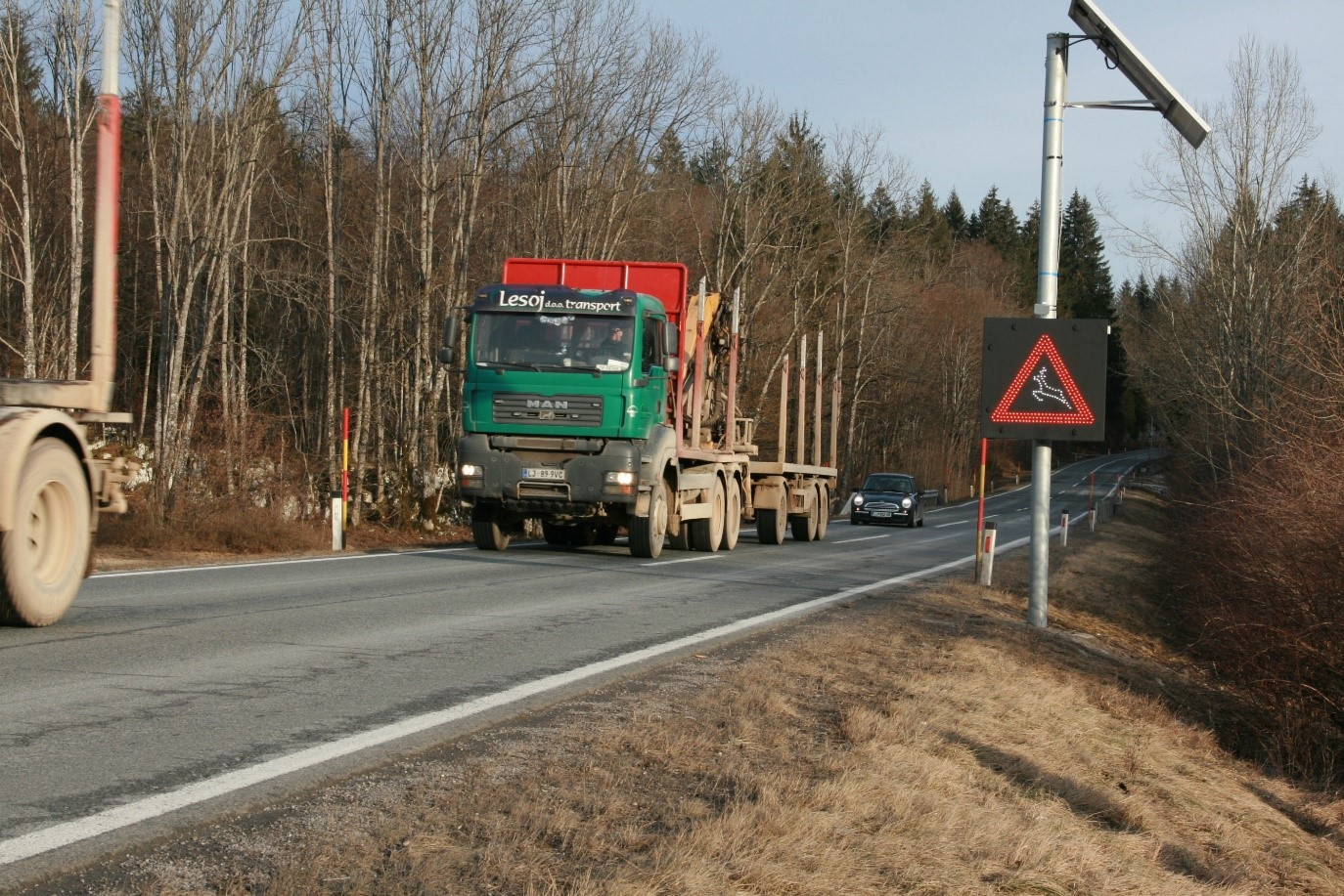 Preventing traffic related bear mortality in Slovenia