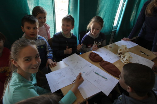 First brown bear educational workshops carried out in Croatia