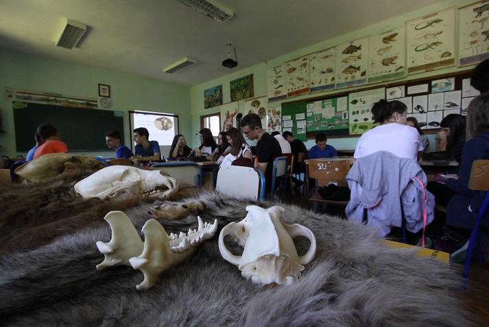 Održano 20 medvjeđih radionica u osnovnim i srednjim školama