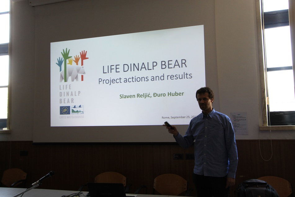 LIFE DINALP BEAR was presented in Rome and Pisa