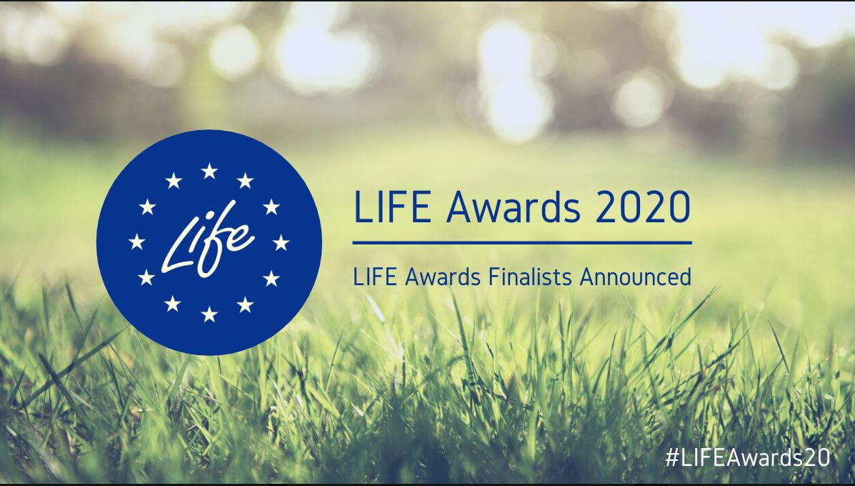 """THE LIFE AWARDS"" nomination for 2020"