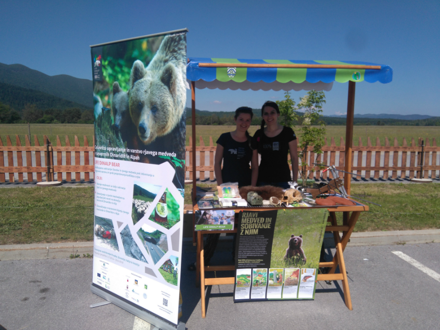 Bear workshops at Slovenian Park Week celebration