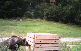 testiranje-medovarnega-kompostnika-1