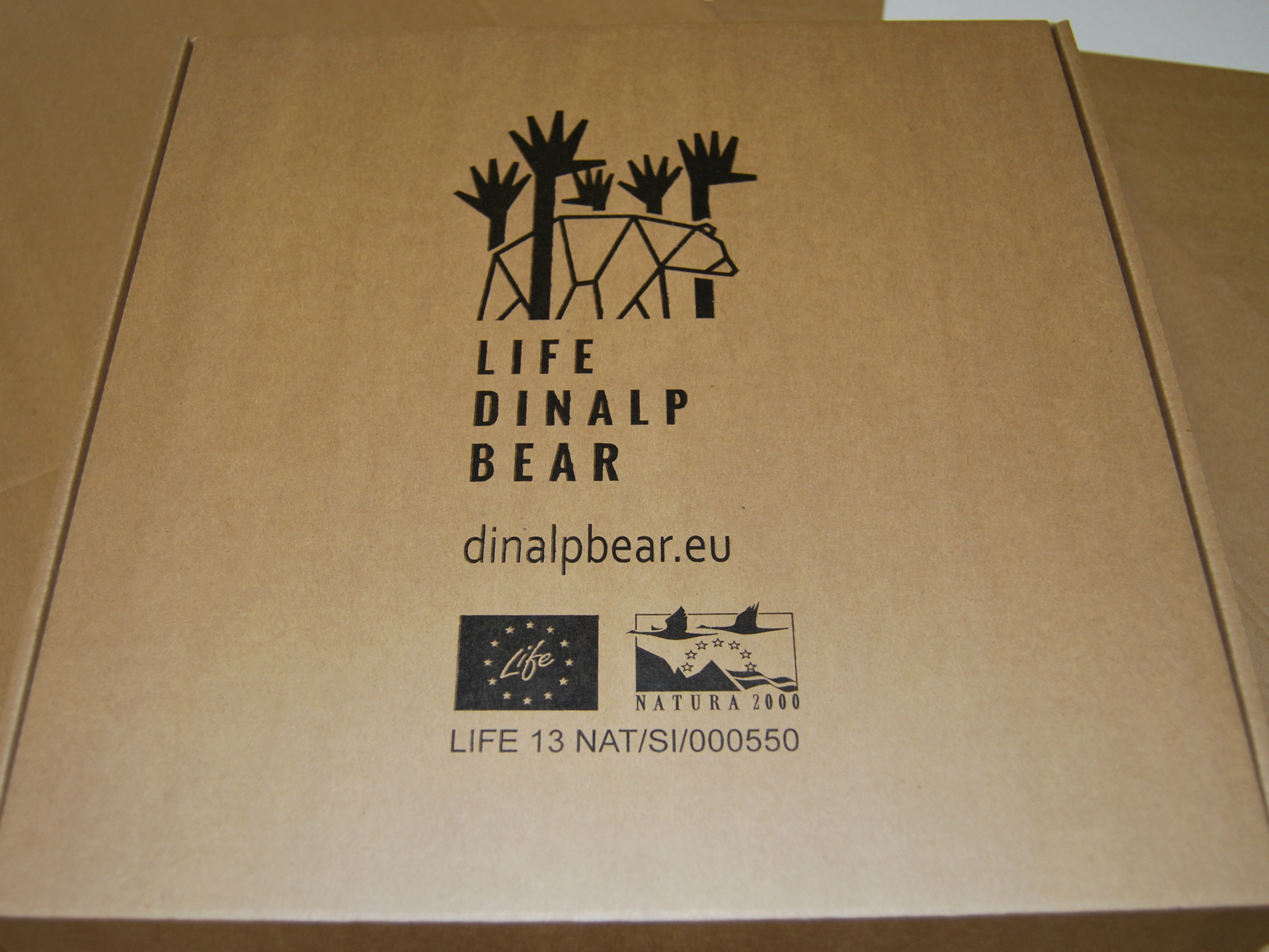 New bear educational kits now available