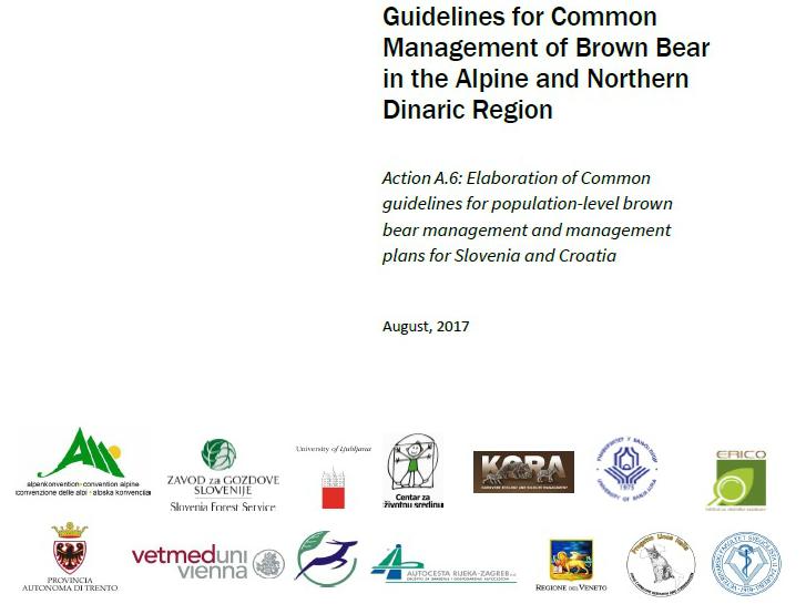 Smernice za poenoteno upravljanje rjavega medveda na območju Alp in severnih Dinaridov so pripravljene
