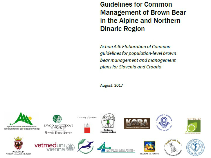 Common guidelines for population-level management of brown bear issued
