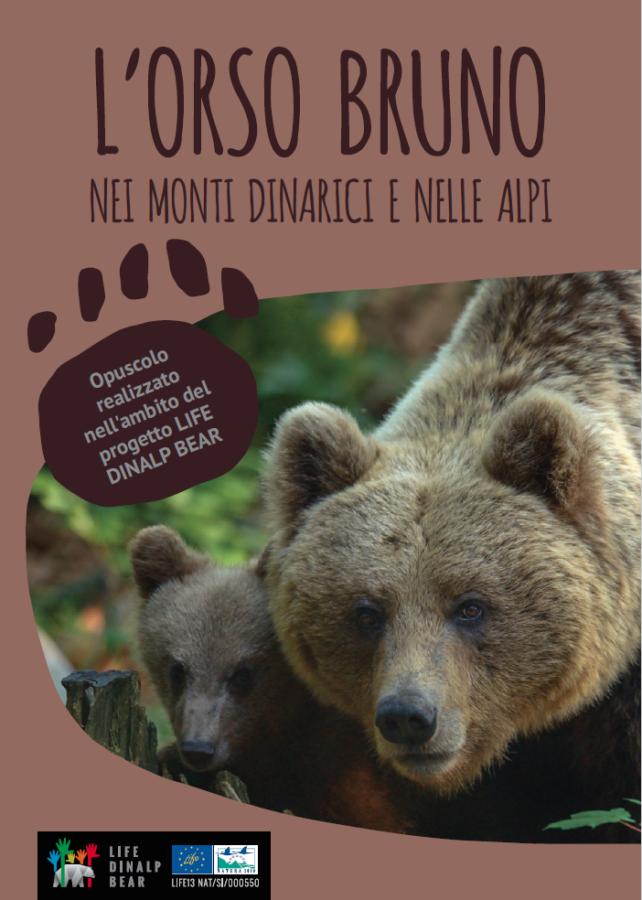 L'orso bruno nei Monti Dinarici e nelle Alpi