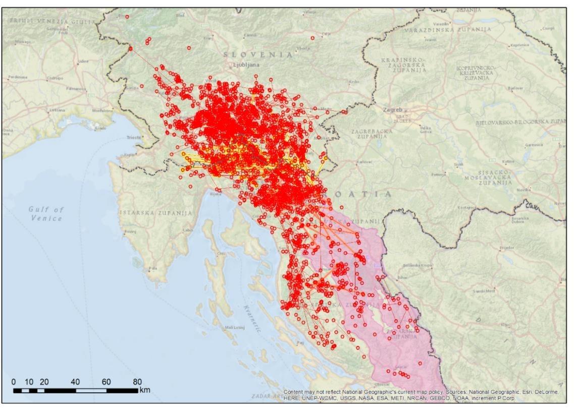 Po prvi puta u Hrvatskoj na znanstveni način procijenjena veličina populacije smeđih medvjeda